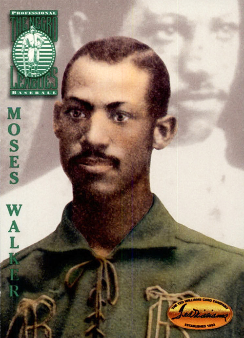 Moses Fleetwood Walker Player Profile